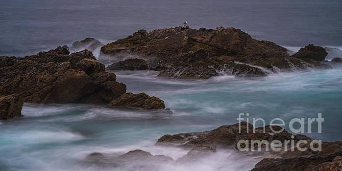 California Coast Waves Motion by Mike Reid