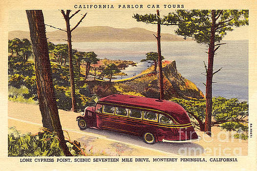 California Views Archives Mr Pat Hathaway Archives - California Parlor Car Tours, near the Lone Cypress Tree circa 1933