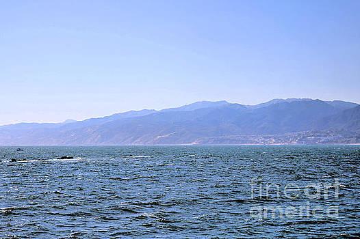 Diann Fisher - California Seascape