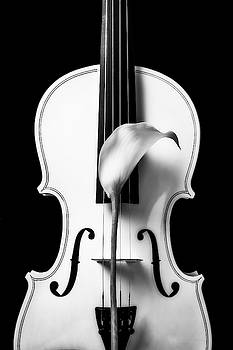 Calla Lily And White Violin In Black And White by Garry Gay