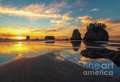 Calm Coastal Sunset Serenity by Mike Reid