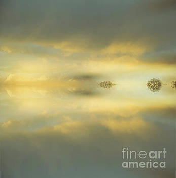 Calming by Alana Ranney