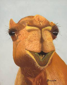 Camel by Brenda Maas
