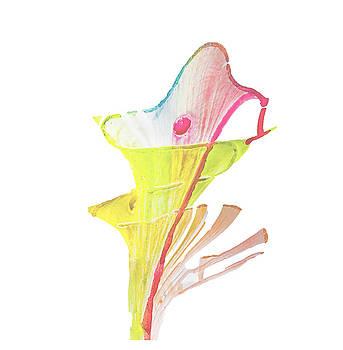 Campanula Flower by Creatives Think
