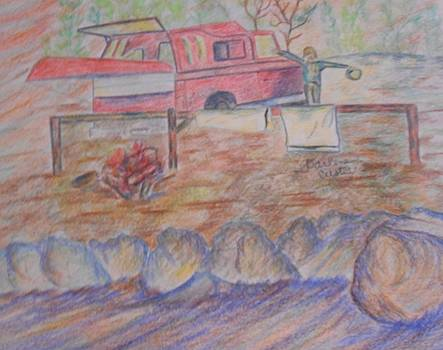 Camping by Darlene Custer