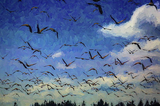 Mike Penney - Canada Geese 1