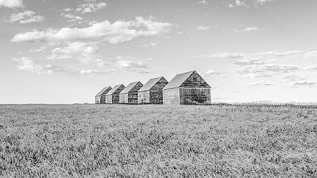 Canadian Prairies by Hamish Mitchell