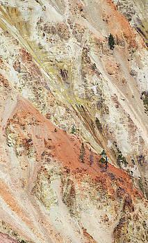 Max Waugh - Canyon Walls