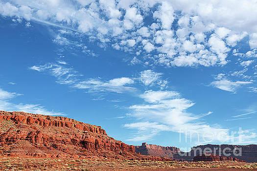 Canyonlands by Sharon Seaward