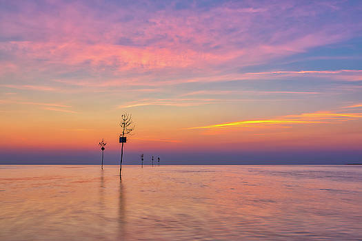 Cape Cod Persistence by Juergen Roth