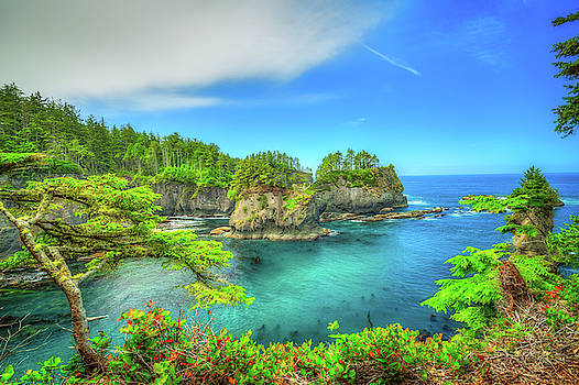 Cape Flattery by Spencer McDonald