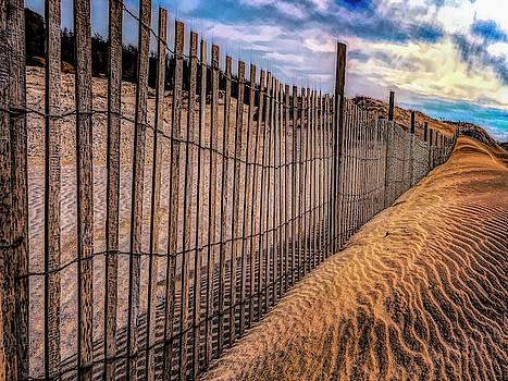 Cape Henlopen by Paul Wear