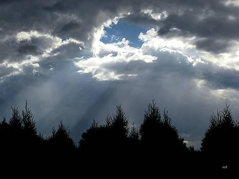 Captivating Sun Rays by Will Borden