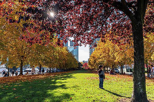 Ross G Strachan - Cardero Park