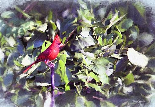 Cardinal at Attention by Diane Lindon Coy