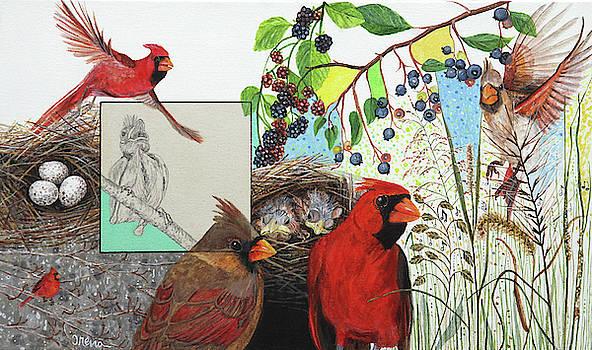 Cardinal Habitat by Trena McNabb