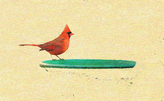 Cardinal Red Bird by Diane Lindon Coy