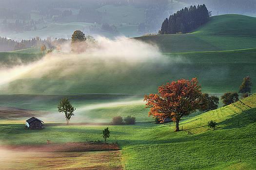 Caressed by mist by Marek Ondracek