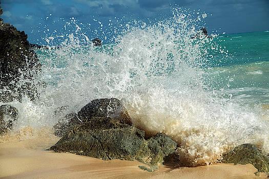 Caribbean Charismatic Ocean Splash   by Betsy Knapp