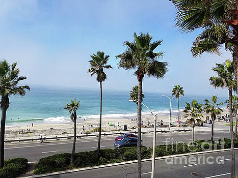 Carlsbad California Just Another Day In Paradise 2  by Tammera Malicki-Wong