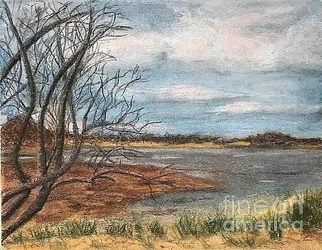 Carolina Inlet by Glenda Zuckerman