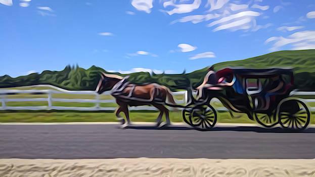 Carriage by Stefanie Beauregard