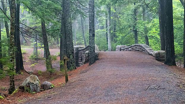 Carriage Trail by Linda Burek