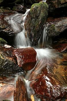 Cascade From Dill Falls by Carol Montoya