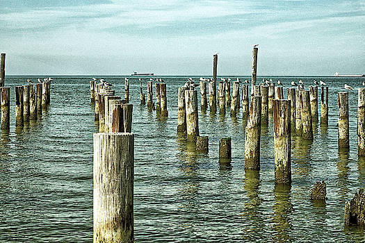 Casino Pilings at Cape Charles Virginia by Bill Swartwout Fine Art Photography