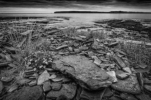 Castletown Beach Mono by John Frid