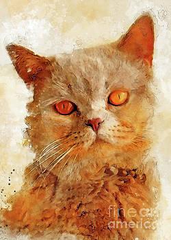 Cat Charlie by Justyna JBJart