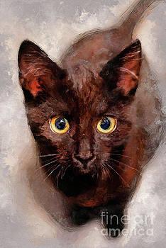cat Hera black cat by Justyna JBJart