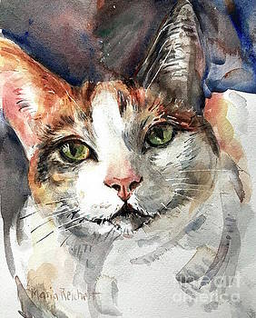 Cat In Watercolor by Maria's Watercolor