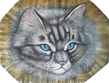 Cat by Jose Renan Herrera