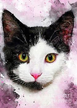 Justyna Jaszke JBJart - cat Misty