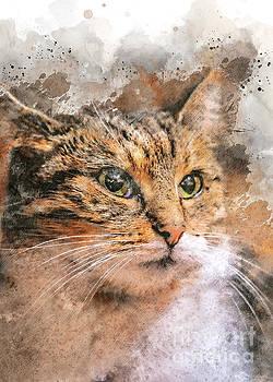 Justyna Jaszke JBJart - cat Saba art