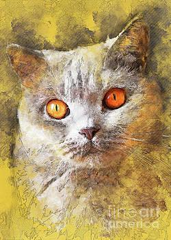 Cat Smokey  by Justyna JBJart