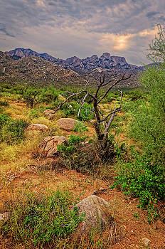 Catalina Foothills v1100 by Mark Myhaver
