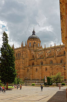 Cathedral of Salamanca II by Sally Weigand