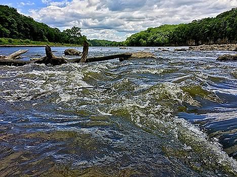 Cedar River Iowa by Dan Miller