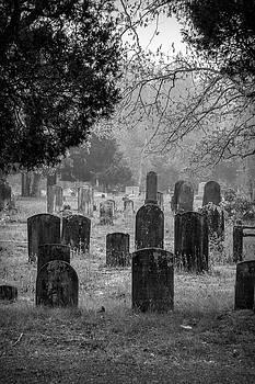 Kristia Adams - Cemetery In The Pines BW