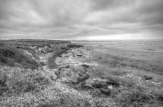 Central California Coastline Cambria by R Scott Duncan