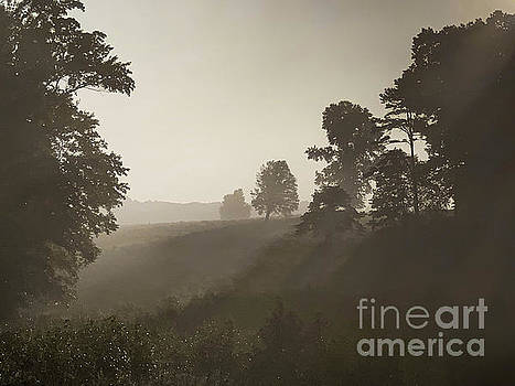 Chancellorsville Battlefield Mist at Sunrise Virginia by Kimberly Blom-Roemer