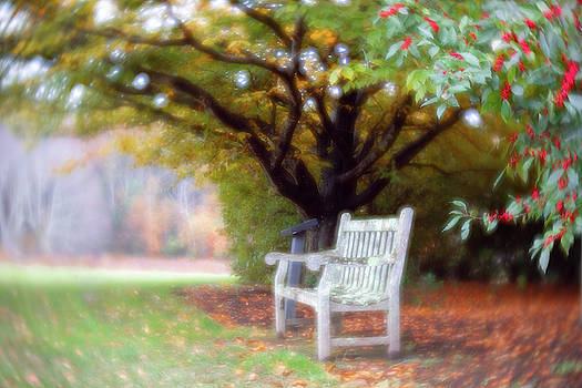 Changing Seasons by Brian Hale