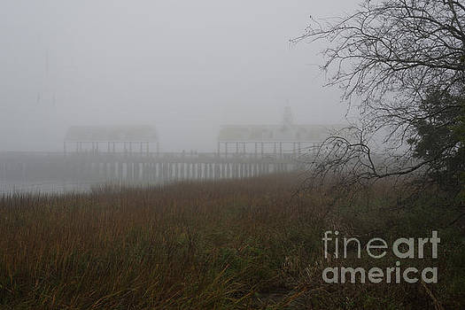Dale Powell - Charleston Fog - Lowcountry Morning