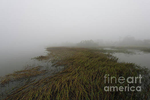 Dale Powell - Charleston Fog - Wando River