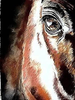 Charli's eyes by Karl-Heinz Luepke