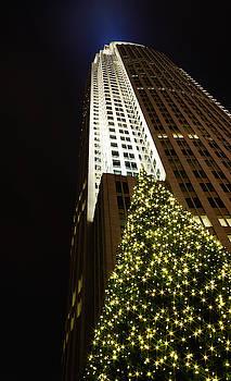 Charlotte Christmas Tree by Christine Buckley