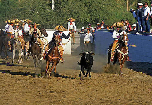 Charros 2  by Bruce Herman
