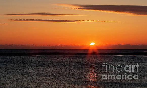 Chatham Massachusetts Sunrise by Sharon Mayhak